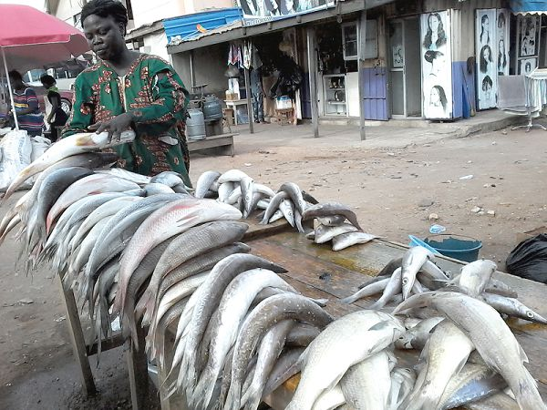 Lamiorkor arranging the fish for sale