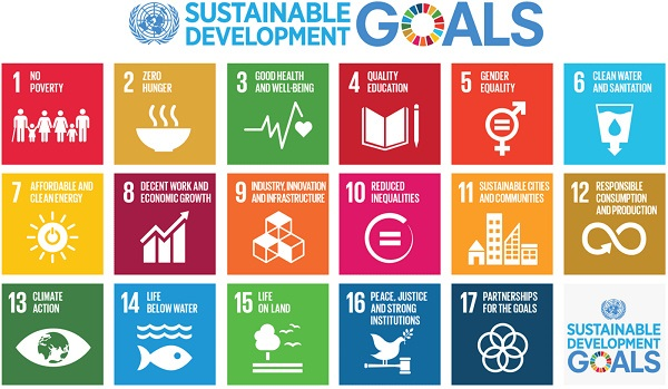 The United Nations Sustainable Development Goals (SDG's)