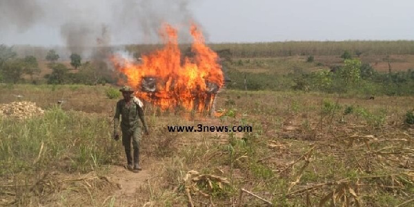 10 persons were arrested by the task force of the Forestry Commission