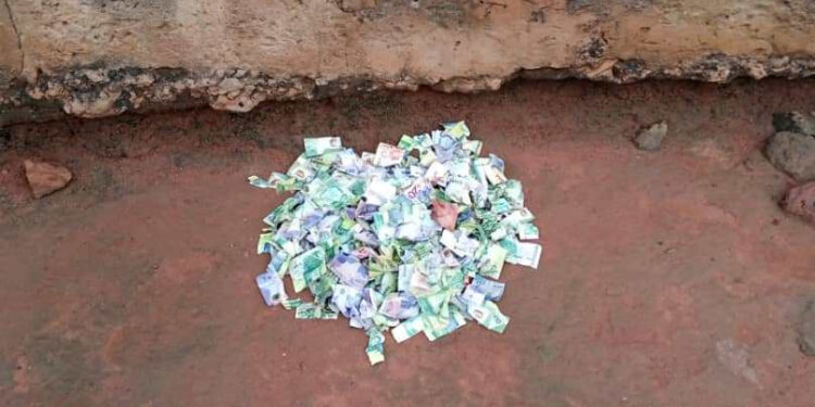 The torn currency notes depoisted behind Yaw Baah's house